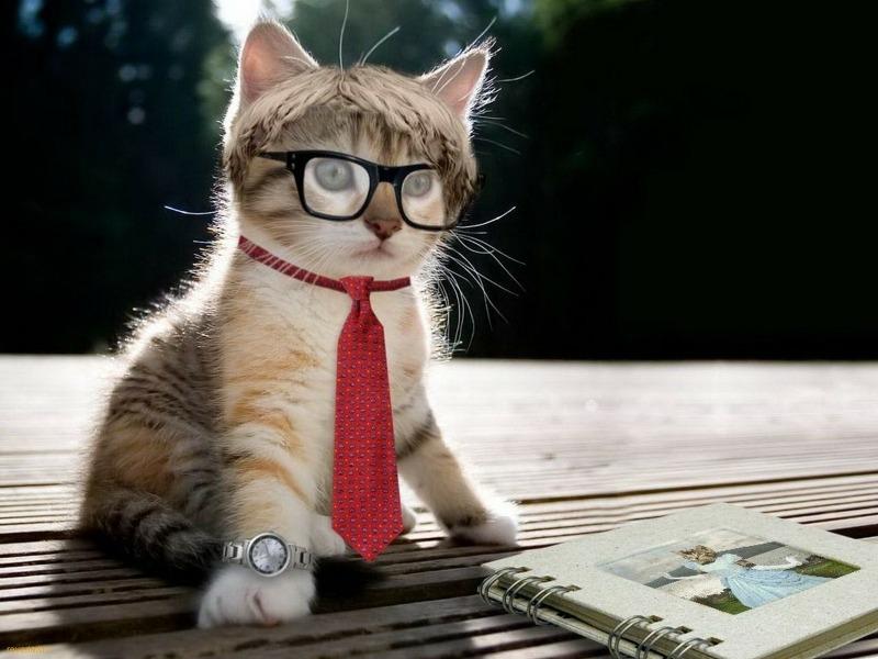 Como combinar seu relógio com os óculos de grau