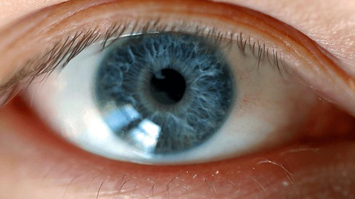 Por que dos 40 aos 60 anos a visão piora significativamente?